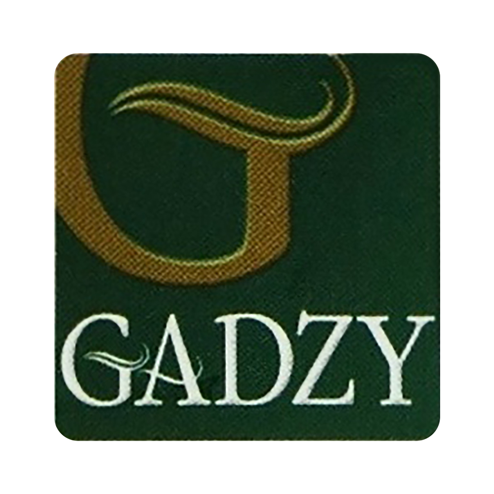 Gadzy